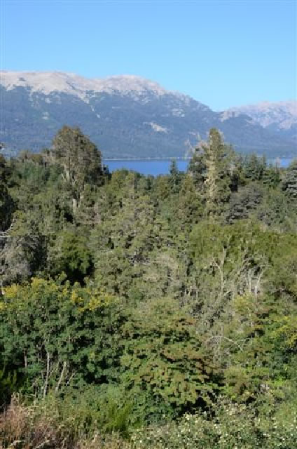 lots for sale with mountain and lake view